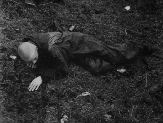 Альберт Погорелкин. Фото Сергея  Сапожникова. Выставка «Страх фотооператора перед самим собой»