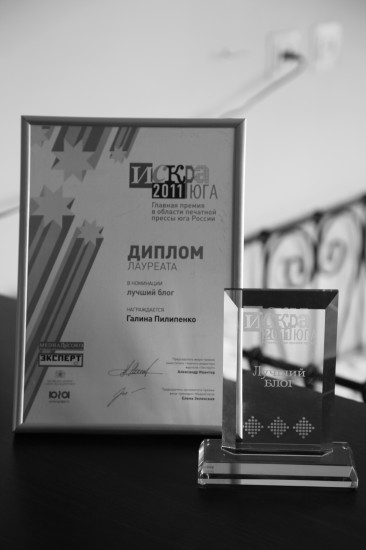 RostovNews.Net Awards. Искра юга