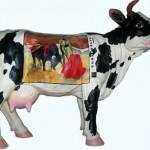 Корова Галины Пилипенко в стаде бурёнок