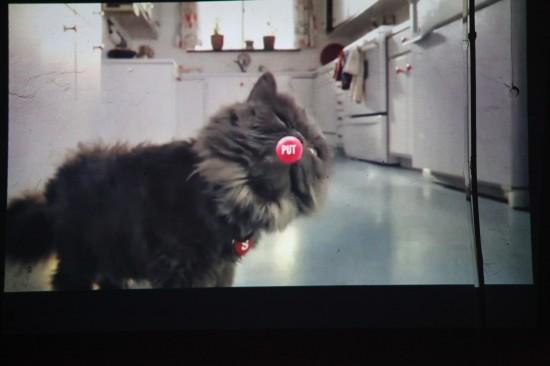Каннские львы - лучшая мировая реклама 1-11.12 в киносети «Чарли»