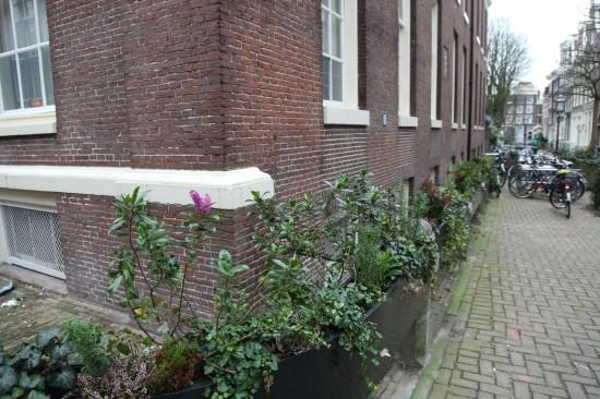 Амстердам. Фото-документалистка — Галина Пилипенко