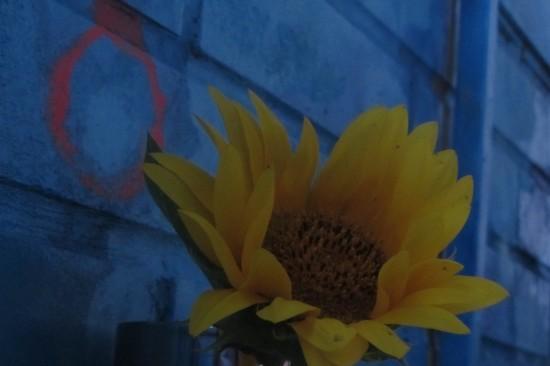 Галина Пилипенко. Ростов. Балкон. Без Лимонова Эдички