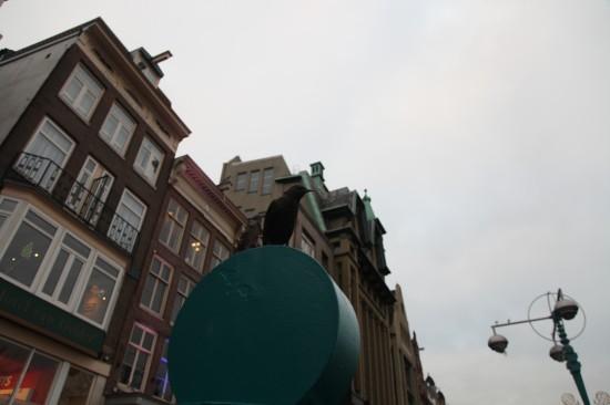 Голландия. Амстердам 2013. Фотографиня Галина Пилипенко