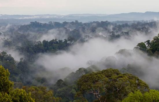 «Бруней Даруссалам: обитель мира»