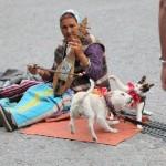 Ростову — о бедных  людях Франции
