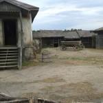 В Ростовской области откроют кино-этно-музей