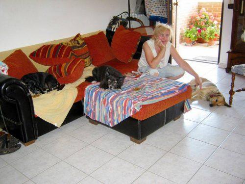 Ольга Тиасто. Собачьи хроники Абруццо. Дама с тремя собачками