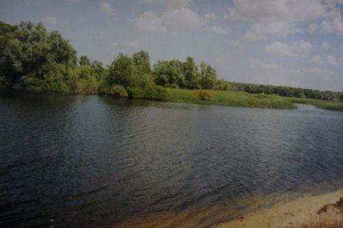 Протока в пойме Дона (левобережье), озеро Бугаково. Фото: Валерий Кульченко. 2000 год.