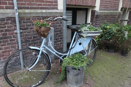 Netherlands. Amsterdam. Photo: Galina PilipenkoНидерланды. Амстердам. Фото: Галина Пилипенко